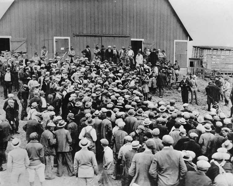1920s and the great depression Though some disagree, there is growing evidence that the behavior of the american economy in the 1920s did not cause the great depression the depressed 1930s were not retribution for the exuberant growth of the 1920s.